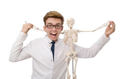 The funny doctor with skeleton isolated on white Stock Photo