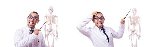 The funny doctor with skeleton isolated on white. Funny doctor with skeleton isolated on white stock photography