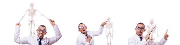 The funny doctor with skeleton isolated on white. Funny doctor with skeleton isolated on white stock image