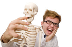 The funny doctor with skeleton on white Stock Image