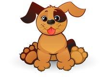 Funny dog Royalty Free Stock Photos