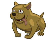 Funny_dog fotografia stock