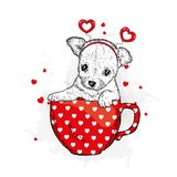 Funny dog in accessories with hearts. Vector illustration for a postcard or a poster, print for clothes. Valentine`s Day. Funny dog in accessories with hearts Stock Images