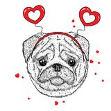 Funny dog in accessories with hearts. Vector illustration for a postcard or a poster, print for clothes. Valentine`s Day. Funny dog in accessories with hearts Royalty Free Stock Photography
