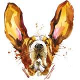 Funny dog basset fashion T-shirt graphics. dog illustration with splash watercolor textured  background. Royalty Free Stock Photos