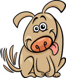 Funny dog cartoon illustration Stock Images