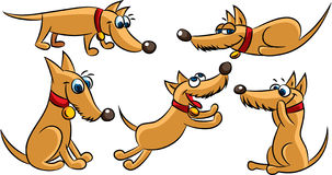 Funny dog cartoon playing Stock Photo