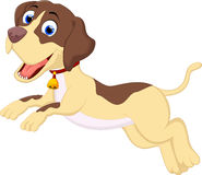 Funny dog cartoon running Stock Image