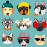 Dog and cat face set in hipster fashion. Funny Dog and cat face set in hipster fashion Royalty Free Stock Photo