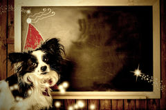 Funny dog Christmas greeting cards. Copy space. Funny dog Christmas greeting cards, little dog and Santa hat children's drawing in a blackboard with copy space stock photos