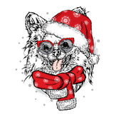 Funny Dog in Christmas hat. Vector illustration. Stock Image