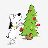 Funny dog and Christmas tree. Little puppy is decorating Christmas tree with red balls Stock Photography