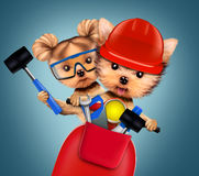 Funny dog with construction tools and scooter. Funny couple of puppies with hard hat, protective goggles, hammer and scooter, isolated on white. Teamwork and Stock Photos