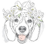 Funny dog in flower wreath. Vector illustration for greeting card, poster, or print on clothes. Stock Photo