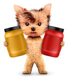 Funny dog holding containers with sport nutrition Stock Photos