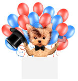 Funny dog holding USA flag. Concept of 4th of July. Funny dog holding USA flags, poster and surrounded by balloons. Concept of 4th of July and Independence Day Vector Illustration