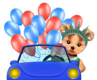 Funny dog holding USA flag. Concept of 4th of July. Funny dog holding USA flags, sitting on car and surrounded by balloons. Concept of 4th of July and Stock Images