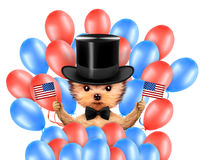 Funny dog holding USA flag. Concept of 4th of July. Funny dog holding USA flags and surrounded by balloons. Concept of 4th of July and Independence Day Stock Images