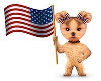 Funny dog holding USA flag. Concept of 4th of July Stock Photo