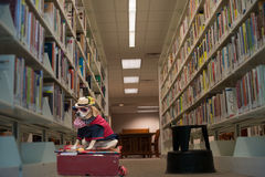 Funny Dog Pet In Costume In The Library Royalty Free Stock Photography