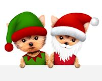 Funny Dog Santa and Elf. Christmas concept. Funny Dog Santa wearing hat, beard and moustache with Elf behind banner. New Year and Christmas concept. Realistic 3D royalty free illustration