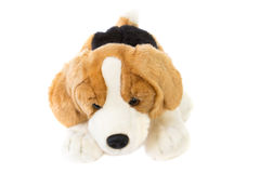 Funny dog. Toy Royalty Free Stock Image