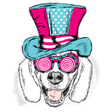 Funny dog in an unusual hat. Vector illustration for greeting card, poster, or print on clothes. Stock Photo