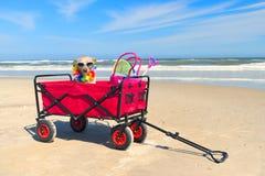 Funny dog on vacation Stock Photos