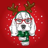 Funny dog wearing glasses and with horns. Puppy in a deer costume. Vector illustration for a card or poster, print on clothes. Stock Photography