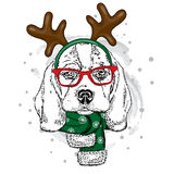 Funny dog wearing glasses and with horns. Puppy in a deer costume. Stock Images