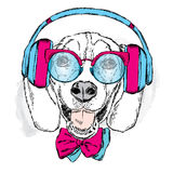 Funny dog wearing headphones, sunglasses and tie. Vector illustration for greeting card, poster, or print on clothes. Funny dog. Royalty Free Stock Photo