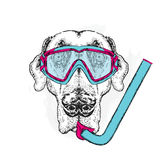Funny dog wearing a mask for diving and snorkel. Vector illustration. Royalty Free Stock Photos