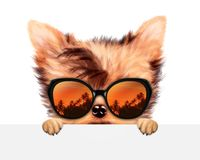 Funny Dog wearing sunglasses behind banner. Funny Dog wearing sunglasses with travel background hiding behind banner. Holiday and vacation concept. Realistic 3D Royalty Free Stock Images