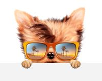 Funny Dog wearing sunglasses behind banner. Funny Dog wearing sunglasses with travel background hiding behind banner. Holiday and vacation concept. Realistic 3D royalty free illustration