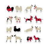 Funny dogs collection, sketch for your design. Vector illustration Royalty Free Stock Image