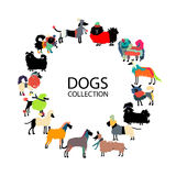 Funny dogs collection, sketch for your design. Vector illustration Stock Photography