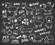 Funny Dogs doodle Set. Hand drawn sketched pets collection Vector Illustration on chalkboard background. vector illustration
