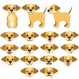 Funny dogs expressing emotions, big vector set Royalty Free Stock Images