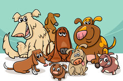 Funny dogs group cartoon Stock Images