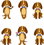 Funny dogs set Royalty Free Stock Photo