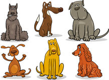 Funny dogs set cartoon illustration Stock Photos