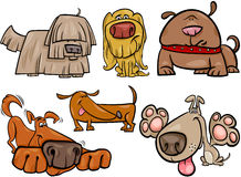 Funny dogs set cartoon illustration Stock Images
