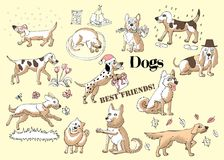 Funny Dogs Sketches. Hand drawn  animals vector illustration Royalty Free Stock Images