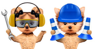 Funny dogs with wrench and cones isolated on white Stock Image