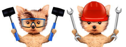 Funny dogs with wrench and hammer Stock Image