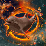 Funny dolphin swimming in the universe Royalty Free Stock Image