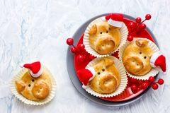 Funny dough pigs in santa hat for new year. 2019