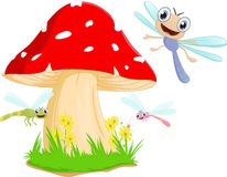 Funny dragonfly cartoon with red mushroom Royalty Free Stock Photography