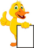 Funny duck cartoon holding blank sign Royalty Free Stock Photos
