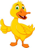 Funny duck cartoon thumb up for you design Stock Images
